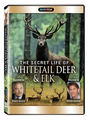 The Secret Life of Whitetail Deer and Elk